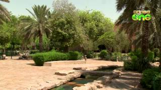 Riyad national museum - A journey through past of Saudi- Weekend arabia 28 (2)