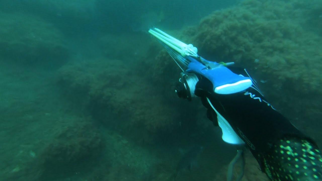 Поиск тени горбыля.  Подводная охота в Черном море.