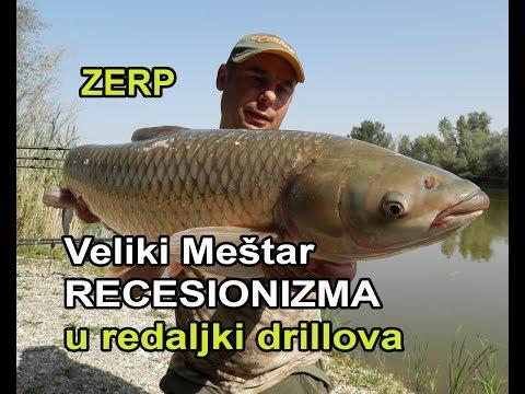 ŠARANski ribolov_Veliki Meštar Recesionizma u redaljki drillova / ZERP