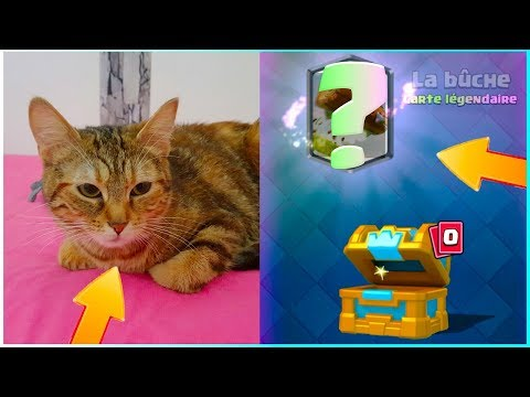 MON CHATON PACK OPENING CLASH ROYALE COFFRE DE CLAN NV 1