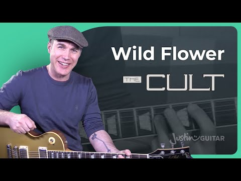 How to play Wild Flower by The Cult - Guitar Lesson Tutorial