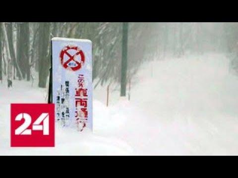 Страны засыпает снегом: Испания и Япония в рекордных сугробах - Россия 24