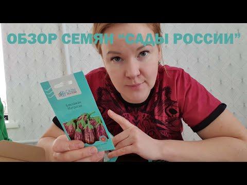 """Обзор семян """"Сады России"""""""