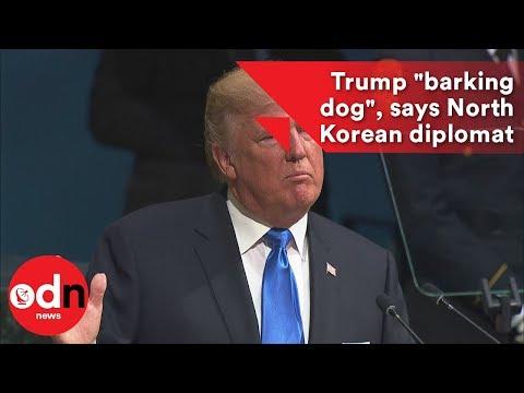 "Trump ""barking dog"", says North Korean diplomat"
