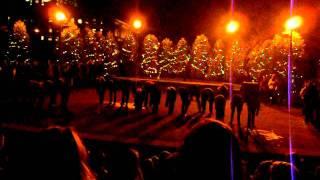 Light Up The Lake Performance 2011 - Fruitcake
