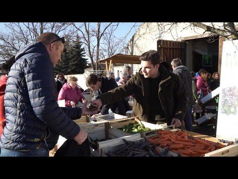 Organic farming: Austria, a European heavyweight