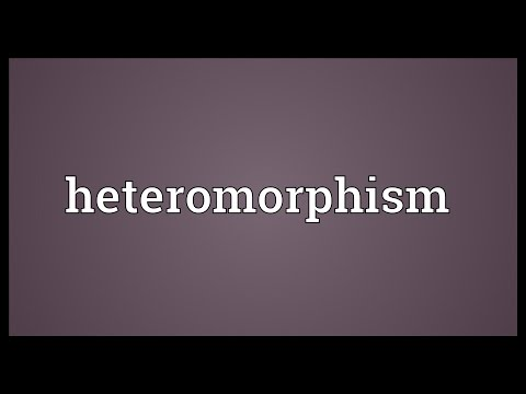 Header of heteromorphism