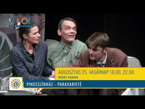 VIDOR FESZTIVÁL - videóajánlók