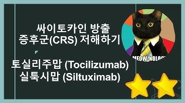 싸이토카인 방출 증후군(CRS) 저해제, 토실리주맙(Tocilizumab)과 실툭시맙(Siltuximab) 작용기전, 설명합니다!