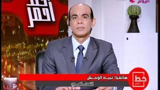 فيديو.. نبيه الوحش يطالب بجلد إيناس الدغيدي