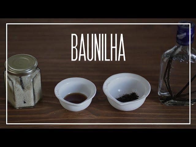 Tudo sobre a BAUNILHA | Dicionário Gastronômico