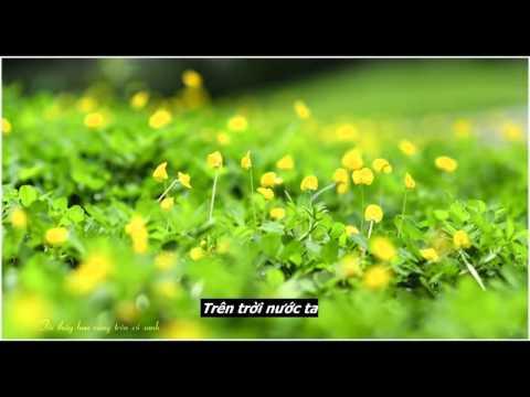 Thằng Cuội - Ngọc Hiển - Guitar - Tôi Thấy Hoa Vàng Trên Cỏ Xanh OST