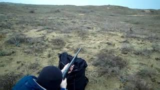 Выстрел пулей из ружья со 100 метров