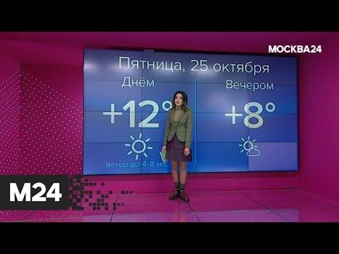 """""""Погода"""": похолодание придет в столицу на следующей неделе - Москва 24"""