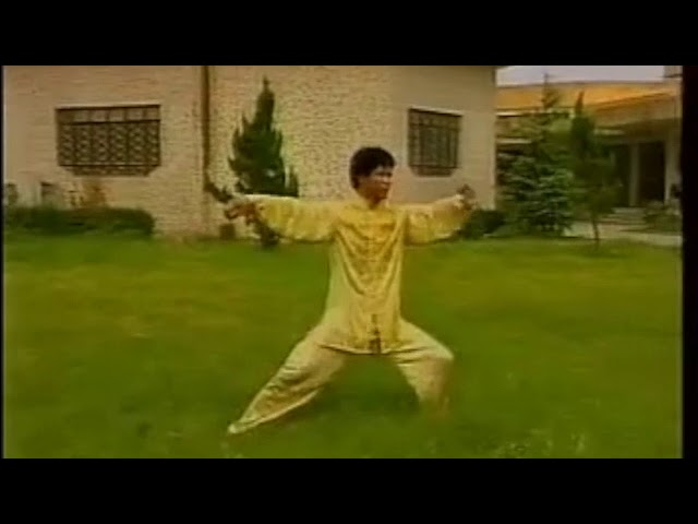 Wang Zhan Jun - Tai Chi style Chen Laojia Yilu 1990's [陈氏太极拳老架 Taijiquan style Chen]