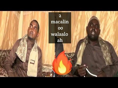 Subac 2 Macalin Oo Walaalo Ah
