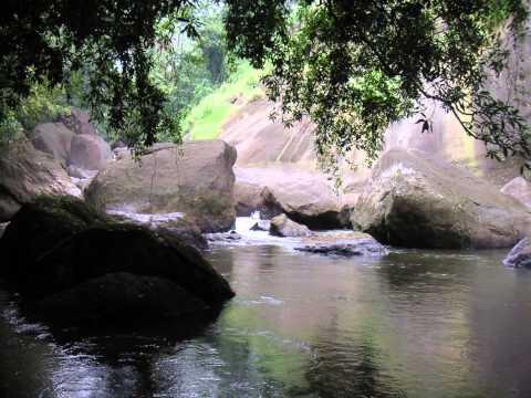 Kerala, India Gods own Country beautiful landscapes nostalgia!!!!!
