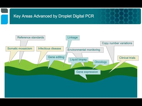 Counting with Droplet Digital™ PCR – More Applications than