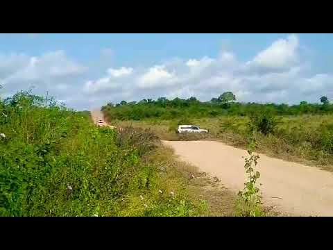 Best of rally || Flying ford rs || tanzania rally