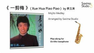 (Eb Alto)《 一剪梅 》( Xue Hua Piao Piao ) (Concert C minor) / 費玉清 – Playalong