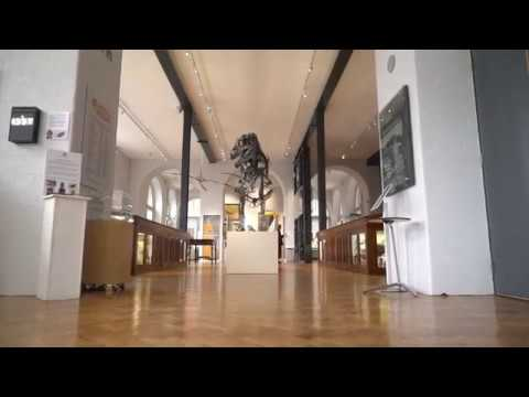 50 Years of Design - Trailer 2