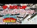 Download Sp Cp Suara Walet Vietnam Top Musim Walet Kawin  Mp3 - Mp4 Download