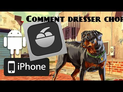 Comment dresser le (chien) chop dans gta5 - YouTube