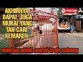 Dapat Trah Murai Sabang Sm Lepas Trotol Konslet  Mp3 - Mp4 Download