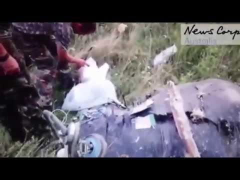 Первые кадры после падения самолета MH17. Украина