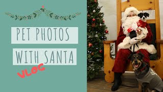 A Dog's Christmas - Santa Photo Vlog