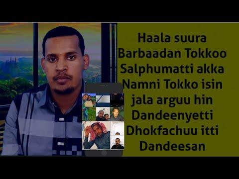 Download Haala suura Barbaadan Tokko akka namni tokkoo sin jala hin arginee Salphumatti dhoksuu itti dandesan