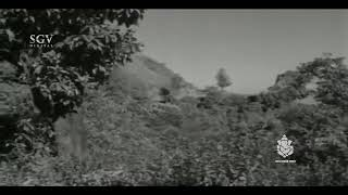 Thavare kannina kumari song in kallara kalla movie