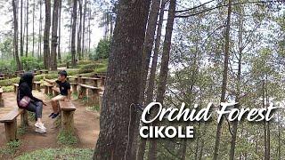 Wisata Ke Orchid Forest Cikole Lembang Bandung Descarca
