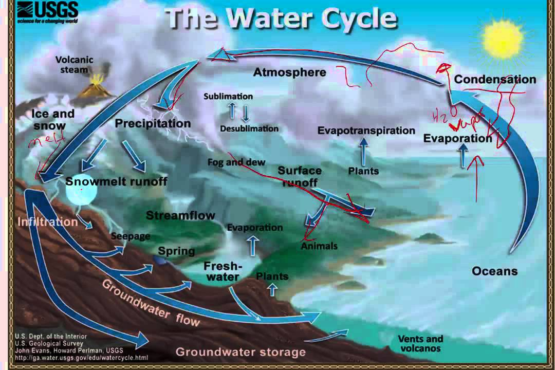 Water and carbon cycle ccuart