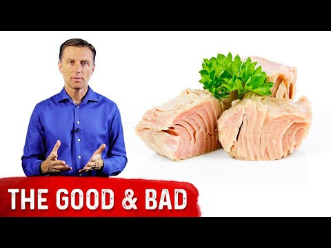 Mercury in Tuna: What Type is Good and Bad?