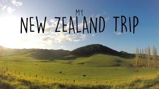 My NEW ZEALAND Trip