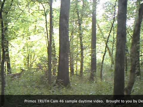 Primos TRUTH Cam 46 Video.mov