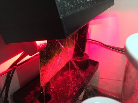 Red Sea Reefer 250   Santa Monica Filtration RAIN2 Algae Turf Scrubber