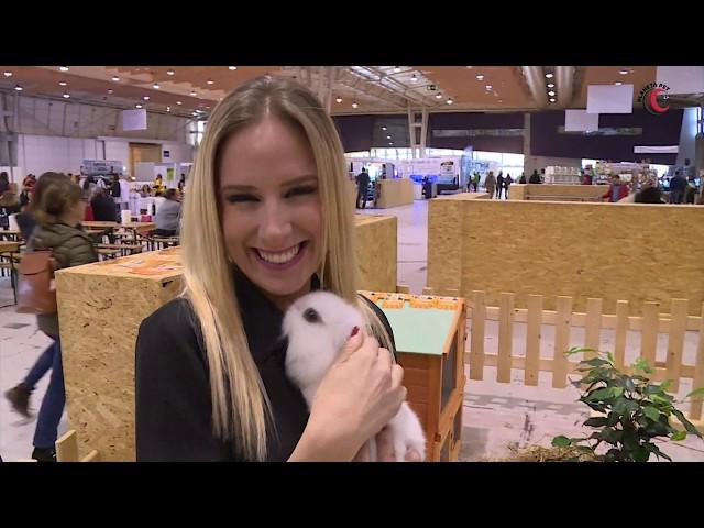 02 - Planeta Pet  - Especial Pet Festival 2019