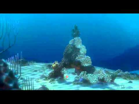Musica popular Argelia canción del emigrante.divx from YouTube · Duration:  5 minutes 52 seconds