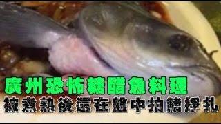 廣州恐怖糖醋魚 餐盤內抽搐 拍打魚鰭 客人照吃