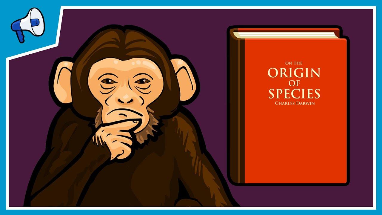 Neden Maymunlardan Daha Zekiyiz
