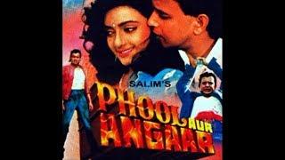 Song:Mujhko Peena Hai Peene Do   Phool Aur Angaar Movie    1993