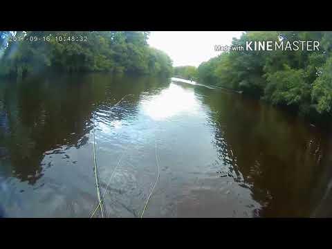 Fly Fishing River Wharfe