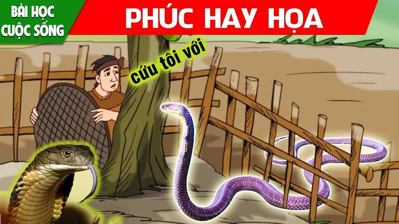 Phim hoạt hình mới nhất - PHÚC HAY HỌA - Quà tặng cuộc sống - Truyện cổ tích việt nam