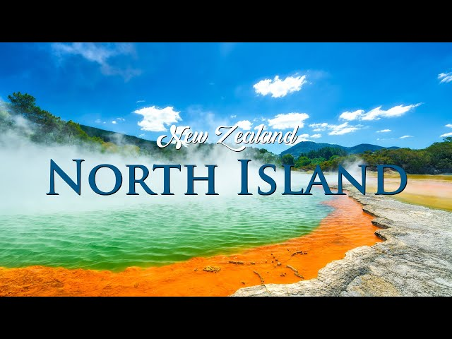 NEW ZEALAND - North Island | TRAVEL VLOG | Auckland, Rotorua, Glow Worm Caves, Hobbiton Movie Set