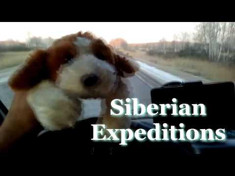 Кавказ 2019 г., солнечное утро, Siberian Expeditions.