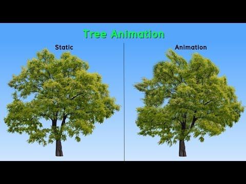 รูปต้นไม้เคลื่อนไหวได้ด้วย After Effect