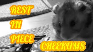 Cheekums tribute (rest in peace)