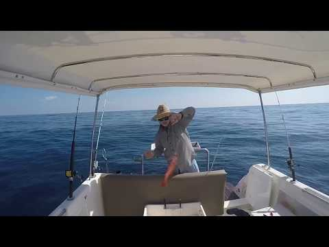 1770 Bunker Group Fishing Sykes and Fitzroy reef 2017